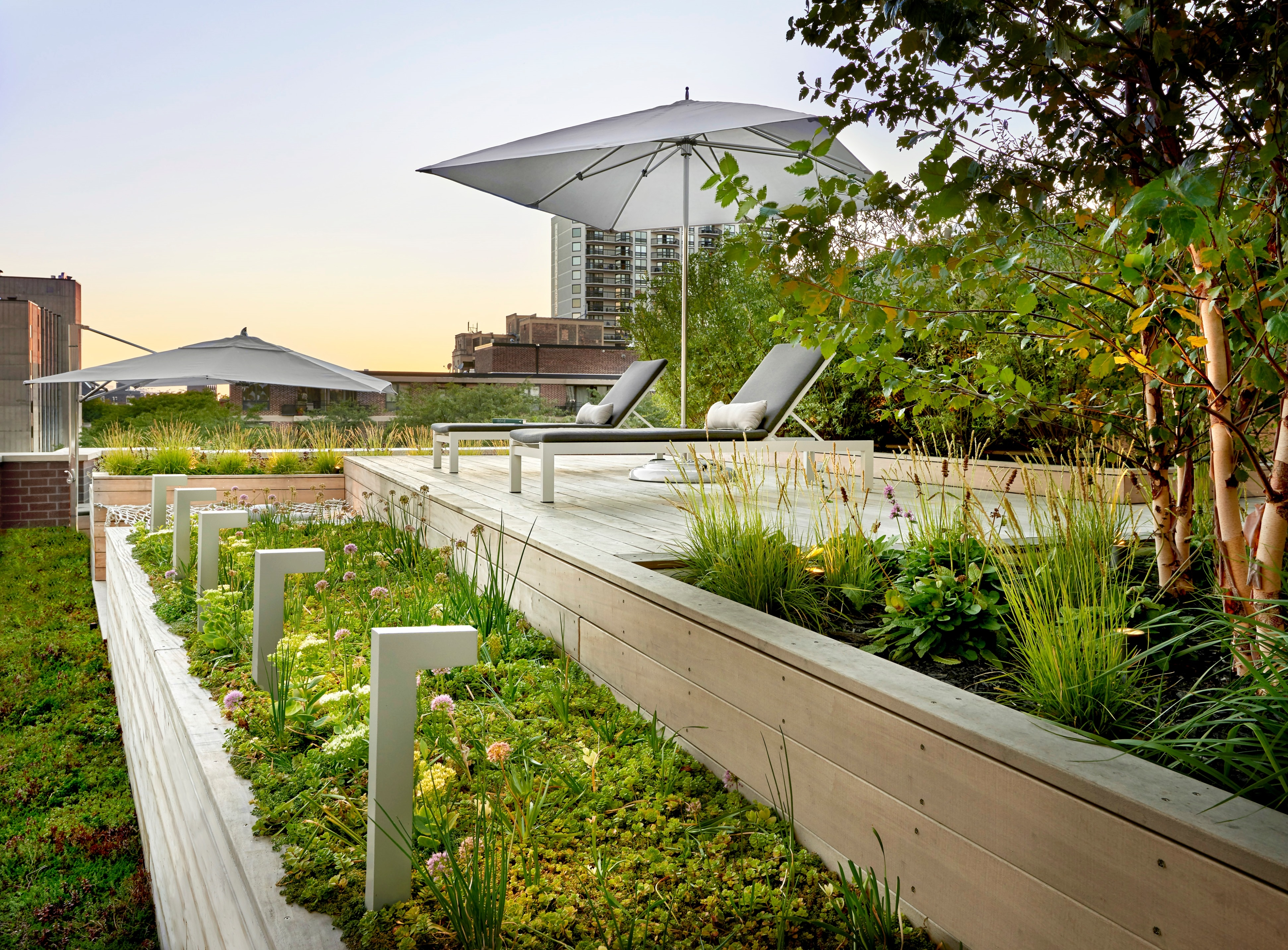 Lakefront rooftop yard small project awards aia chicago for Lakefront landscaping photos